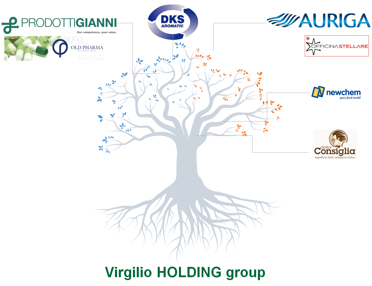 VirgilioHoldingGroup